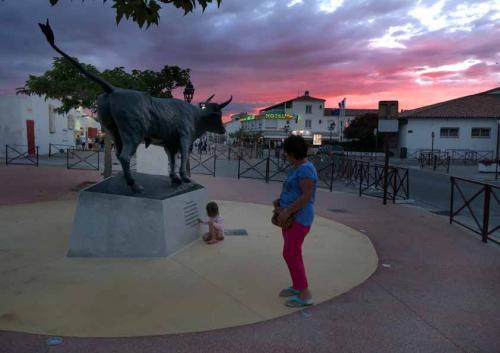 Saintes-Maries-de-la-Mer, Camargue, France. People near bull sta